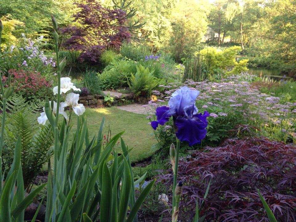 Garden at its best