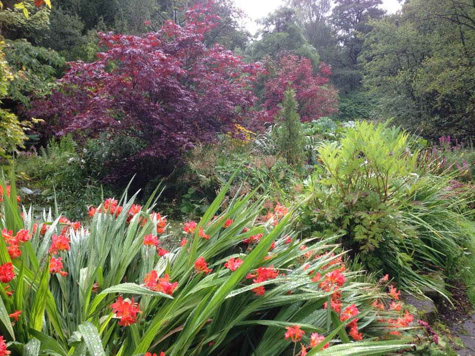 autumn gardens