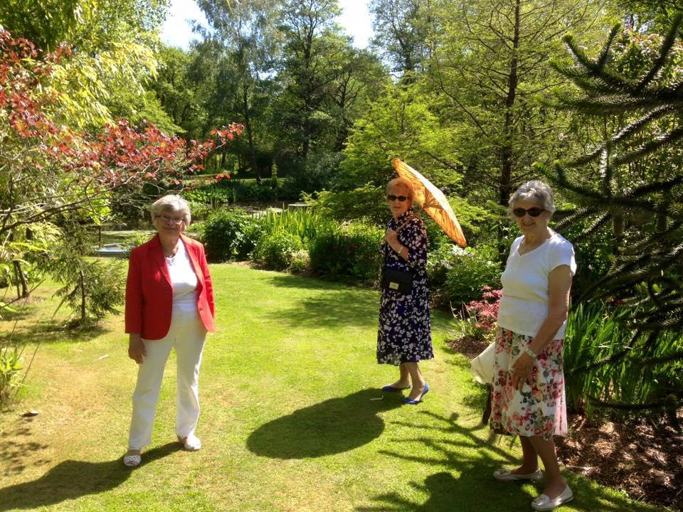 garden sunshiine